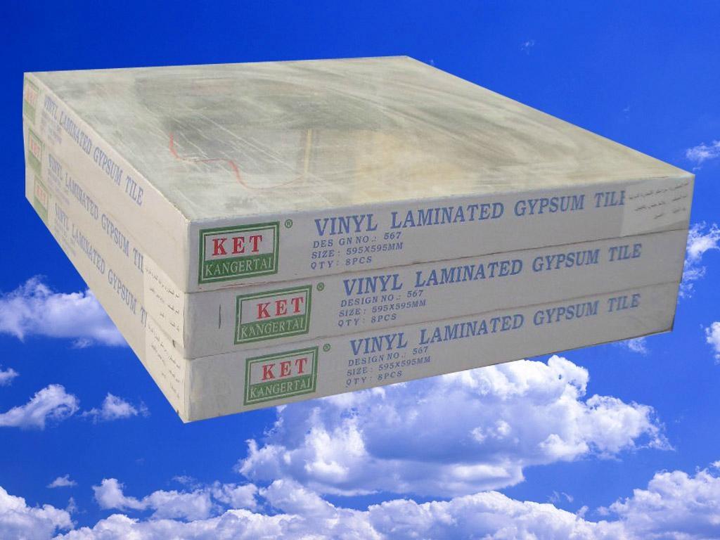 PVC 石膏天花板 1