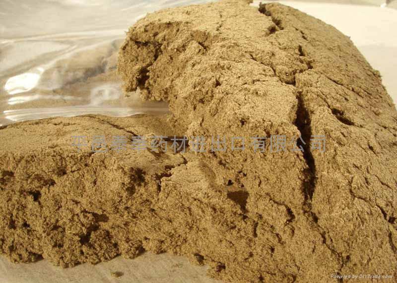Artemisia Floss  1