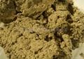 Artemisia Floss