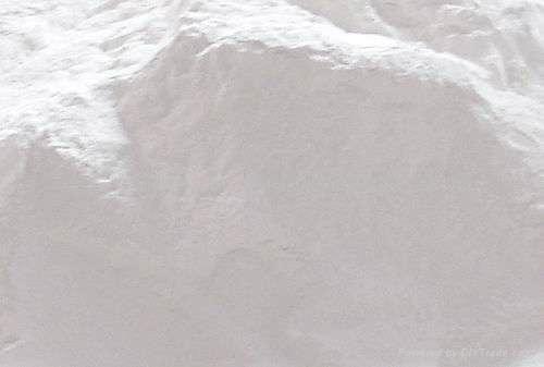 中国产石膏粉 1