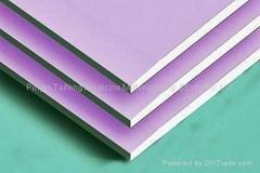 Standard Gypsum Board P