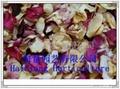 美容花瓣供應