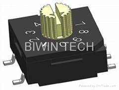 BCD Roatry Dip Switch