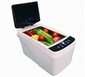 Ultrasonic vegetable and fruit cleaning machine