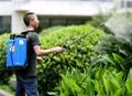 16L Knapsack/Backpack Manual Hand Pressure Agricultural Sprayer 6