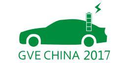 9月9日杭州新能源汽車兩湖巡游城市綠色出行體驗活動 1