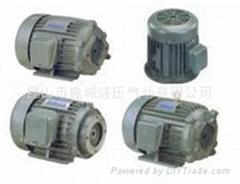C03-43B0电机S.Y油压电机