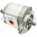 RGP高压齿轮油泵 1