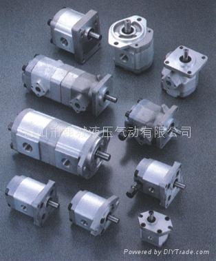 齿轮油泵 1