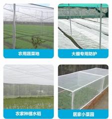 聚乙烯高密度防虫网