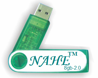 8GB Twister USB Flash Drive 3