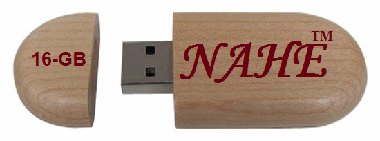 16gb Wooden USB Flash Drive 2