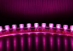 LED软条灯