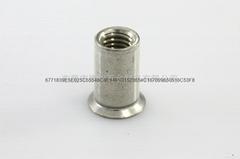 Circular tube sheet plug