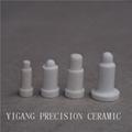 Special Alumina Ceramic 5