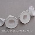 Special Alumina Ceramic 2