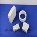 95 alumina ceramic seal va  e core 5