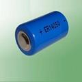 ER14250 1/2 AA lithium batteries 1200mAh
