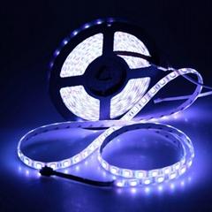 厂家供应室内楼梯装饰专用LED软灯条婚庆布置LED灯带