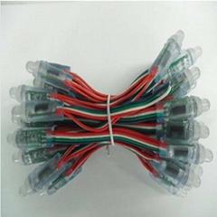 供应LED灯串/广告防水LED灯串
