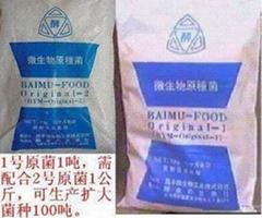 酵素菌日本进口原菌种4