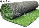 南京人造塑胶草坪