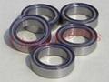 Teflon Sealed Ball Bearings