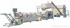 CH-200乾掛麵自動製麵設備