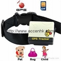 Pet Surveillance GPS Tracker support non-server accurate tracking with low cost 1