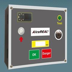 Quick Breathalyzer with door lock control