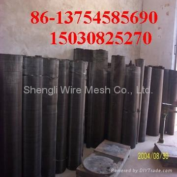 Black Wire Cloth 3