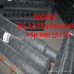 galvanized and pvc Hexagonal wire mesh