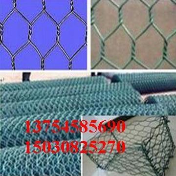 镀锌六角网 2