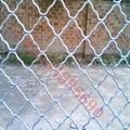 ga  anized and pvc Guarding mesh