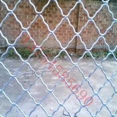 galvanized and pvc Guarding mesh