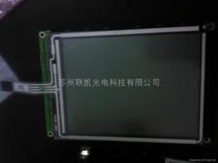 WG320240BP3-TMI-V#010