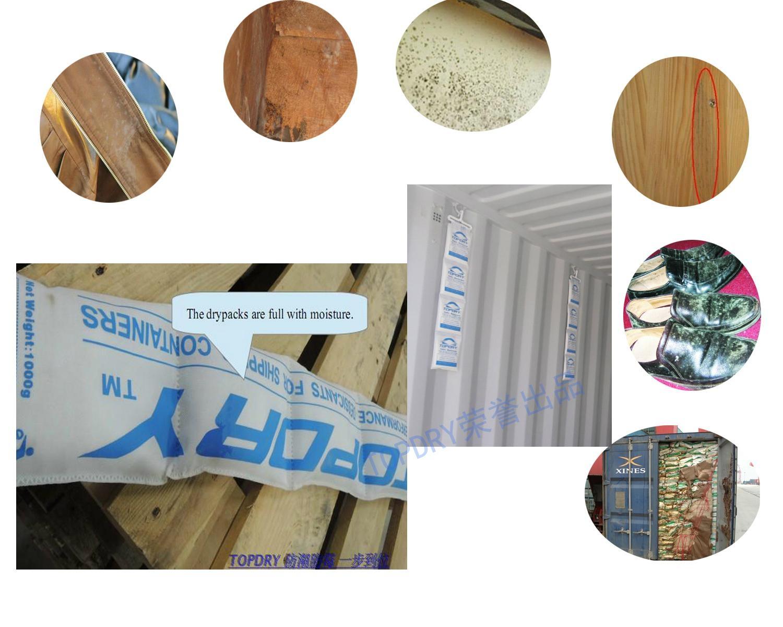 TOPDRY强力干燥剂 干燥棒 1