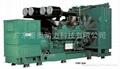 康明斯电力柴油发电机组 2