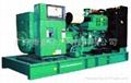 康明斯电力柴油发电机组 1