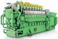 曼Man雙燃料發電機組(0.6