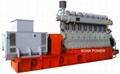 生物質氣發電機組(150-10