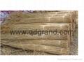sweet water reed