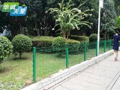 綠化帶護欄網