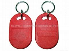 EM4100 RXK12 Key Chain