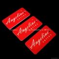 ATA5577 Angeline Key Chain
