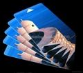 MIFARE 1K Paper Card