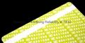 ICODE SLI + EM4200 Dual Frequency PVC ISO Card