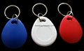 Temic RXK03 Key Fob