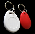 Hitag 2 RXK03 Key Fob (Special Offer from 6-Year Gold Supplier) 12