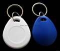 Hitag 2 RXK03 Key Fob (Special Offer from 6-Year Gold Supplier) 13
